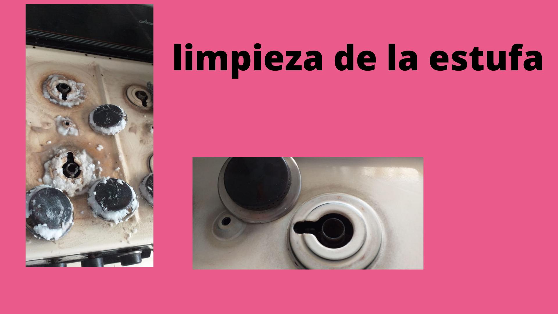 LIMPIEZA DE ESTUFA